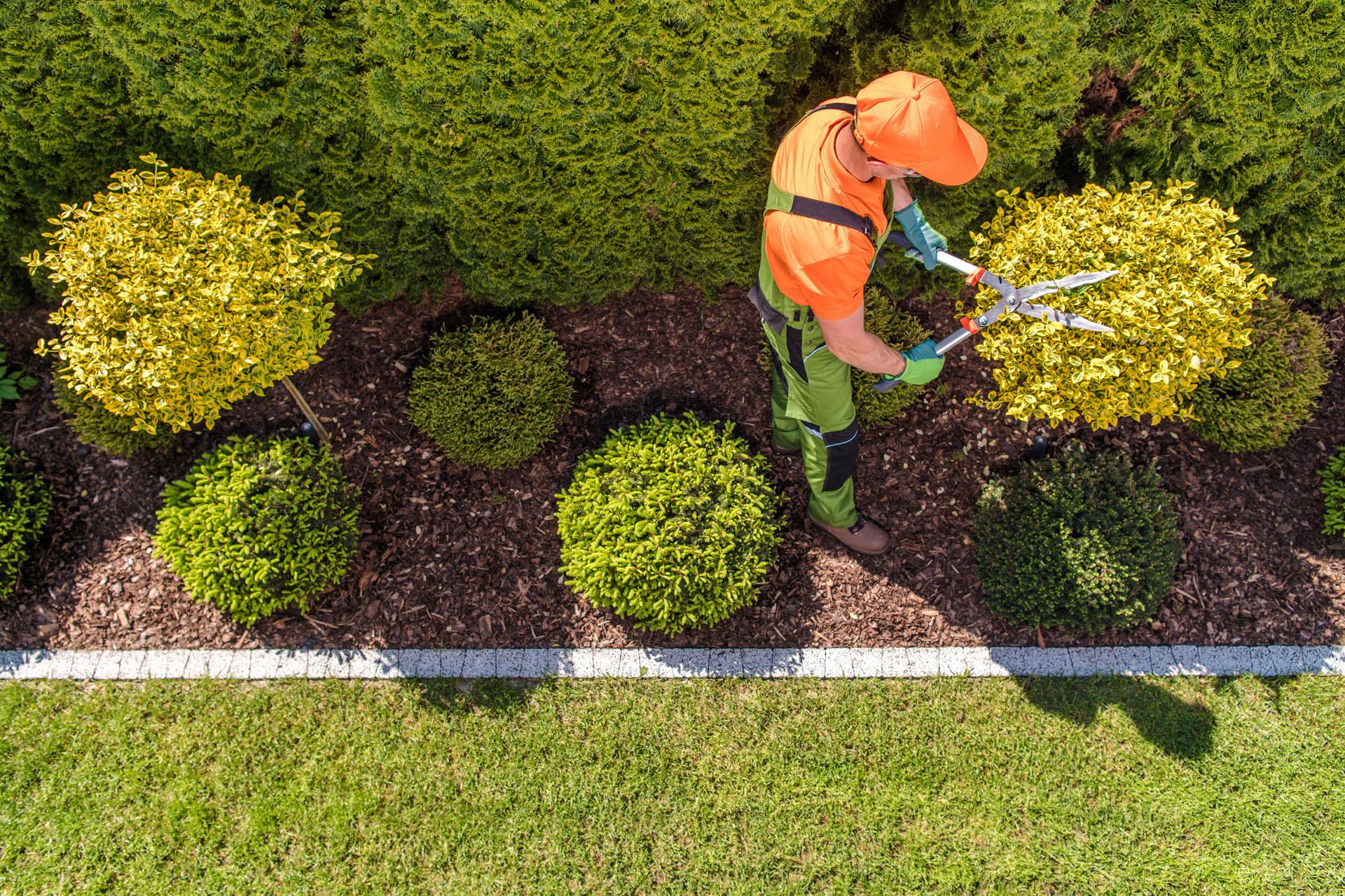 formation-jardinier-paysagiste