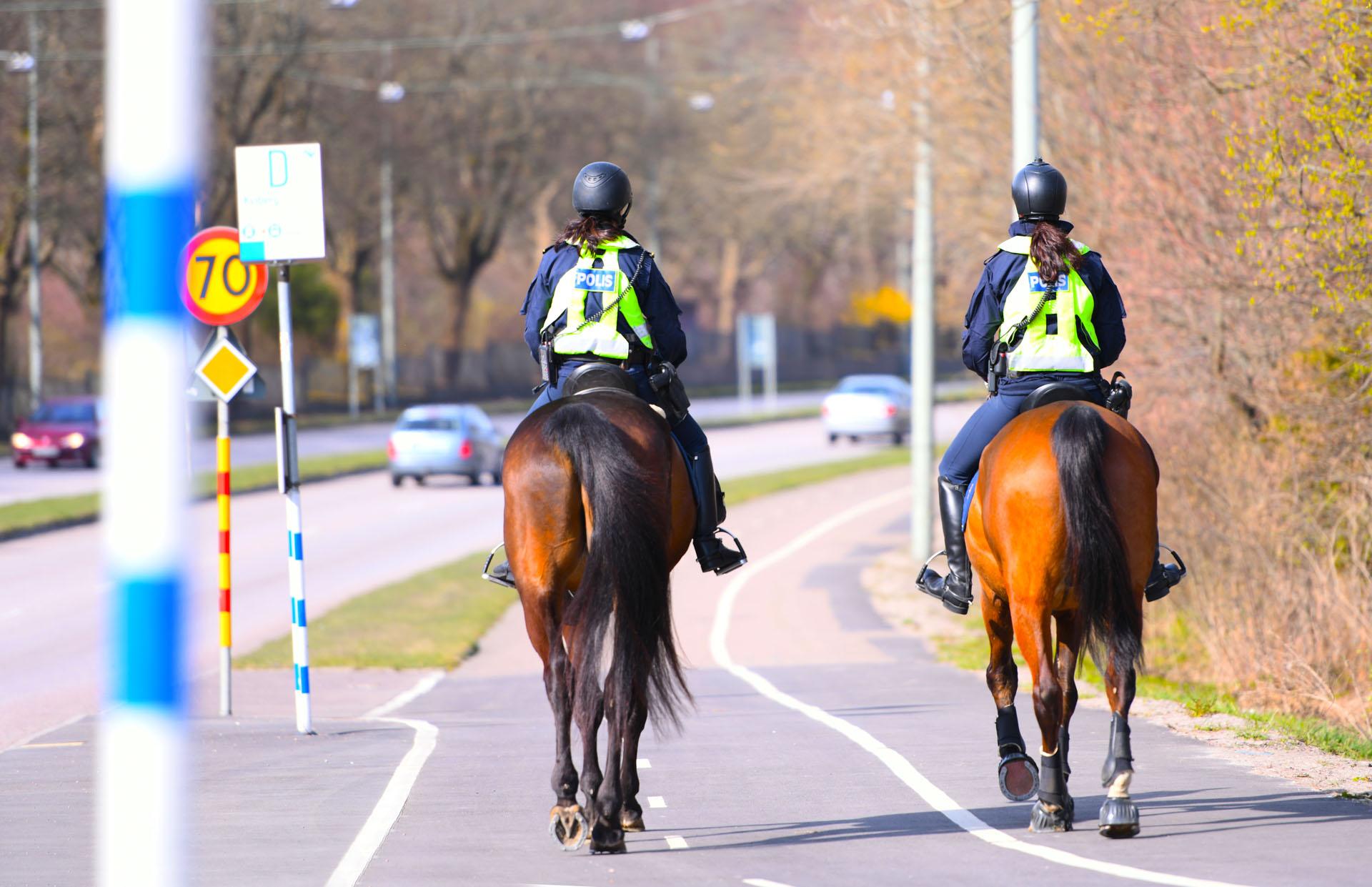 metier-policier-a-cheval